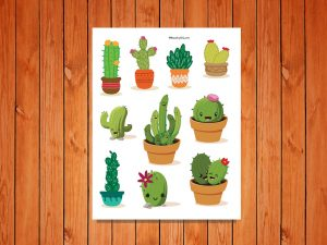 Cactus Collection low res
